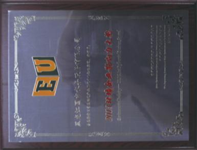 2013 年环境企业影响力大奖